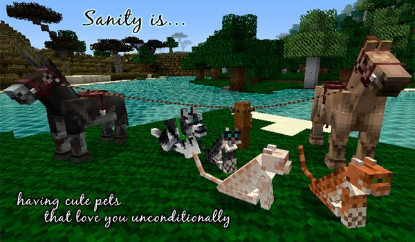 image where we see horses and cats of Minecraft, decorated with alvoria's texture pack 1.12 and 1.11.