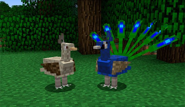 two copies of birds find your Minecraft worlds, with this mod installed.
