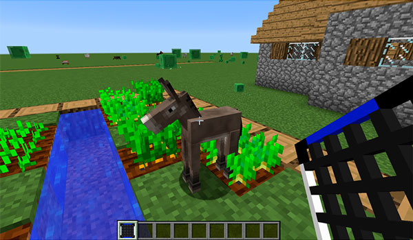 Image where we see a player about to capture an animal with one of the nets offered by the AnimalNet Mod.