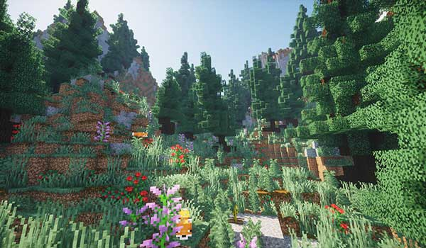 Image where we can see a wooded area with a lot of vegetation, in the Wandering Isles Map.