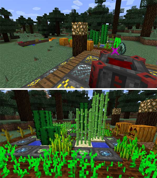 Image where we can see some of the blocks and magic items that we can make with the Blood Magic Mod.