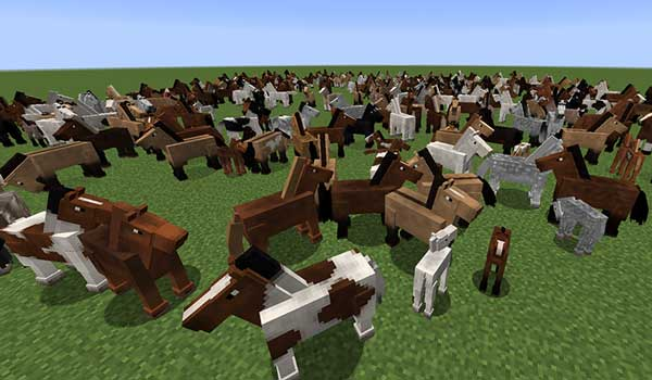 Image where we can see the variety of horse species that can be generated by installing the Realistic Horse Genetics Mod.