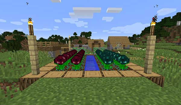 Image where we can see an orchard, in a village, where the new crops offered by the Resynth Mod are being cultivated.