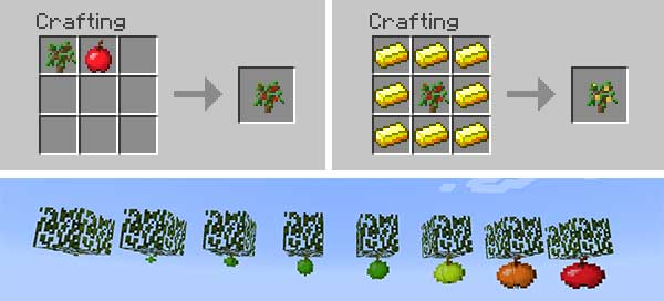 Image where we can see how the apple trees that will allow us to plant the Apple Trees Revived Mod are made.